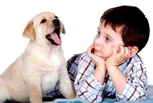 Дети и домашние животные: собака
