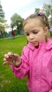 Ребенок боится насекомых: как исправить ситуацию?