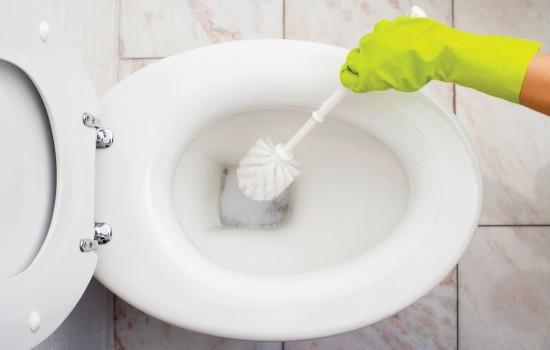 К чему снится унитаз: новый, странный, в необычном месте, мыть унитаз?
